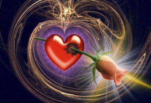 Роза и сердце