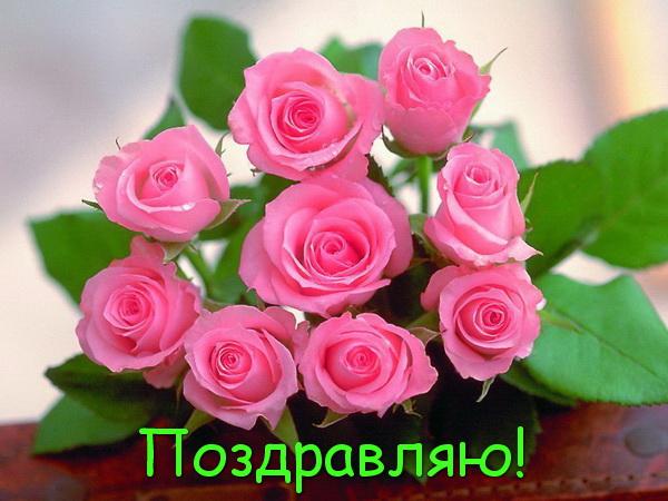 Алые розы в День рождения