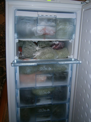 Как заморозить грибы, ягоды, овощи, фрукты