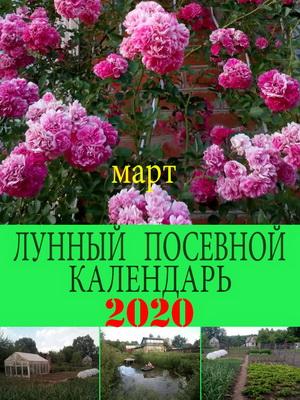Лунный посевной календарь на 2019 год март