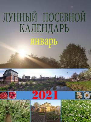 Лунный посевной календарь на 2021 год январь